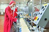Quality-control workers at a production line in a cheese factory