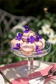 Macaroons with violets on a garden table