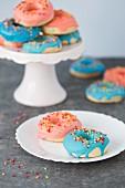Donuts mit rosa und blauem Zuckerguss und Zuckerstreuseln