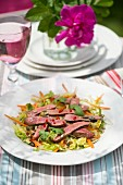 Oriental beef salad with chilli, limes and coriander on a table outside