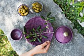 Olives and an olive sprig on a plate on a stone platter (Italy)