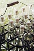 Bottles of water in a metal bottle carrier