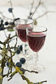 Two glasses of sloe liqueur