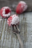 Raspberries with icing sugar
