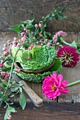 Line a wooden bowl with Savoy cabbage leaves and decorate with zinnias and spindle seed pods