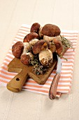 Fresh porcini mushrooms on a chopping board
