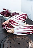 Radicchio treviso n a cast iron hob and in a porcelain bowl