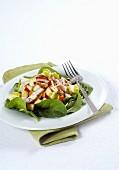 Kaninchensalat mit Spinat