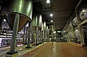 Belgian beer (Mort Subite, Lambic) in tanks in a brewery