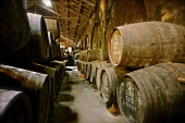 Port wine in wooden barrels in the Niepoort winery, Portugal