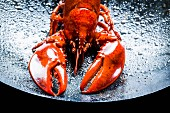 A large lobster in a black wok