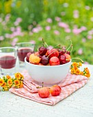Fresh cherries and two glasses of cherry juice on a garden table