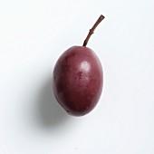 A Gaeta olive