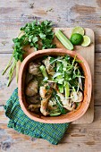 Chicken curry with cucumber, limes, spring onions and coriander