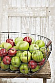 Fresh apples in a wire basket
