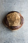 Tourte de Meule (French sourdough country bread)