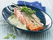 Pan-fried fillet of salmon with herb sauce