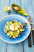Avocado with boiled egg and cress