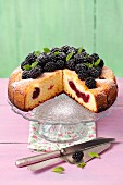 Yoghurt cake with blackberries