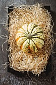 A pumpkin on straw (seen from above)