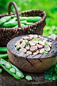 Boiled broad beans with garlic and parsley
