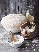 Different types of flour and a bowl of dough for pizza