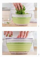 Drying chervil in a salad spinner