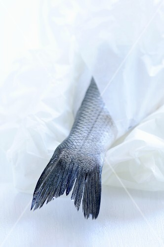 Fish wrapped in paper