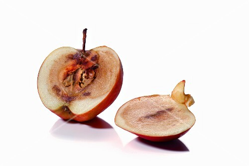 A mouldy apple, sliced