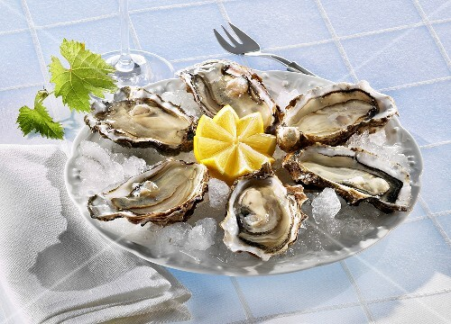 Fresh oysters with lemon on ice