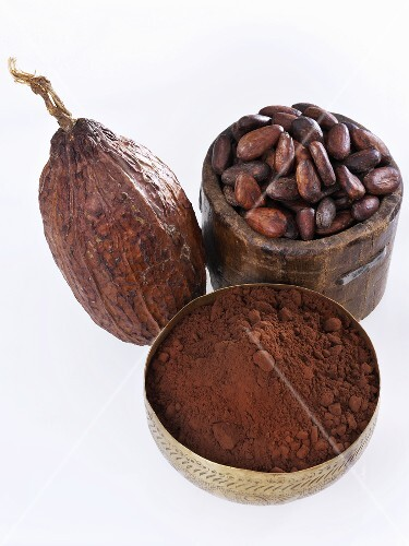 Cocoa fruit, cocoa beans and cocoa powder