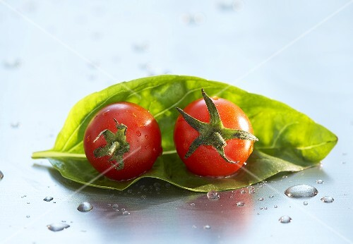 Two cherry tomatoes on a basil leaf