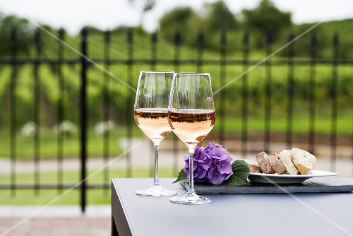 Two glasses of rosé wine, vineyard in background