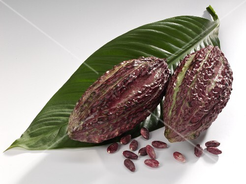 Cacao fruit with leaf and beans