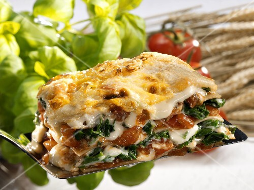 A portion of spinach lasagne with tomatoes