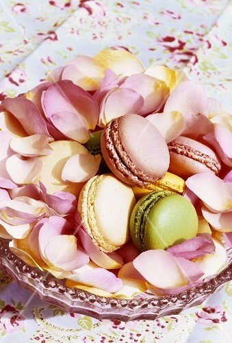 Coloured macarons and rose petals in a dish