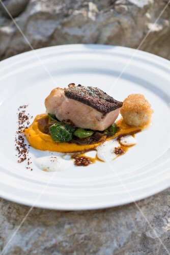 Fillet of Bentheim country pork on a bed of pumpkin puree