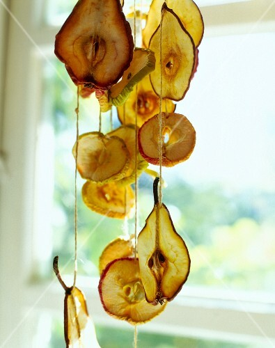 Dried fruit slices hanging on ribbons in front of window