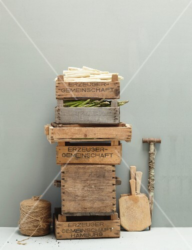 Fresh asparagus in a stack of boxes against a grey wall