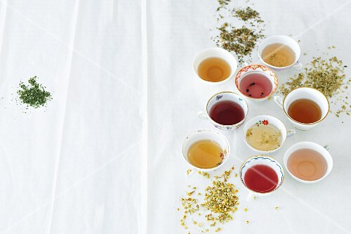 Various cups of tea between dried herbs and spices