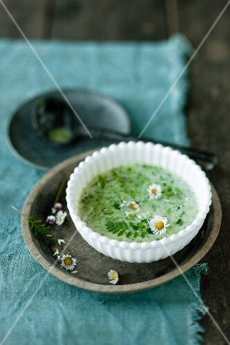 Wild herb soup garnished with daisies