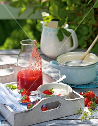 Rice pudding with strawberry sauce on tray in a garden