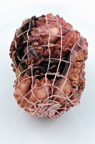 A cooked octopus in a net (for carpaccio)