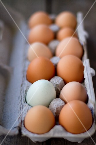 A Carton of Farm Fresh Eggs - Brown and Blue
