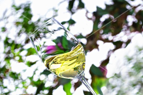 A glass of white wine being swirled against a spring background
