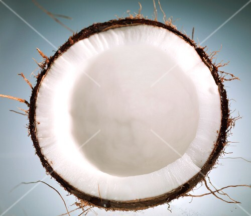 Half a coconut, seen from above