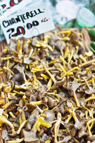 Fresh chanterelle mushrooms at a market