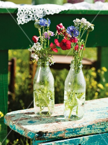 Bunches of wild flowers in bottles
