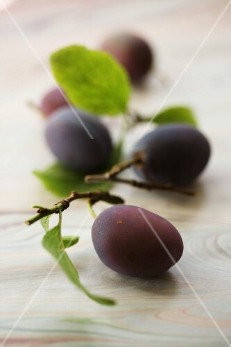 Plums with leaves