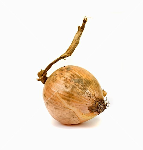 An old onion